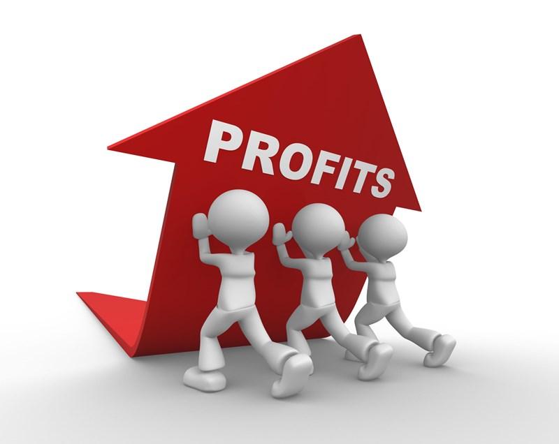 Volledige schuld aandeelhouder als uitdeling van winst aangemerkt